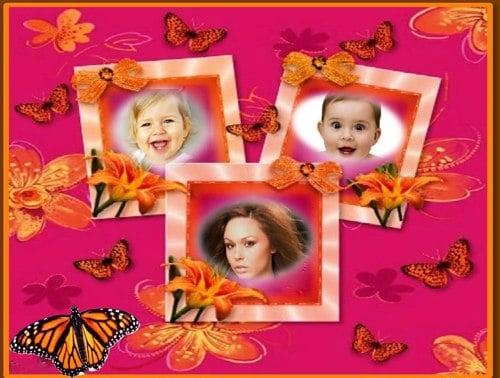 Marco de mariposas para tres fotos