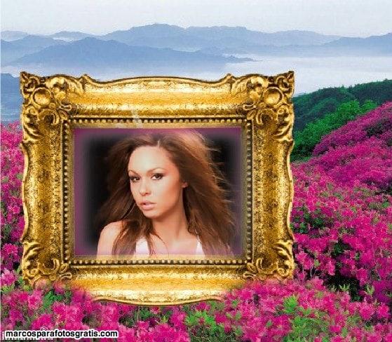 Marcos dorados marcos para fotos online - Marcos de fotos dorados ...